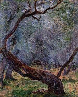 Monet - studium drzewa oliwnego