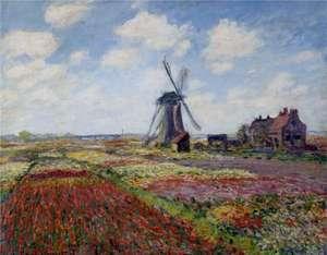 Obraz Moneta - 'Pole tulipanów z wiatrakiem'